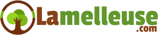 lamelleuse.com